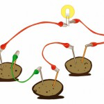 Generate electricity from potatoes