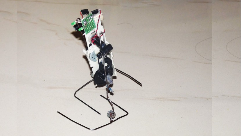 How to make a walking robot at home